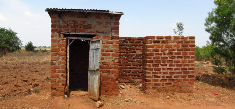 Are pit latrines in urban areas of SubSaharan Africa performing? A review of usage, filling, insects and odour nuisances