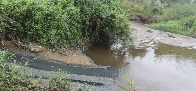 Infrastructure investments and operating costs for fecal sludge and sewage treatment systems in Kampala, Uganda