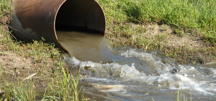 Pharmaceutical pollution of water resources in Nakivubo wetlands and Lake Victoria, Kampala, Uganda